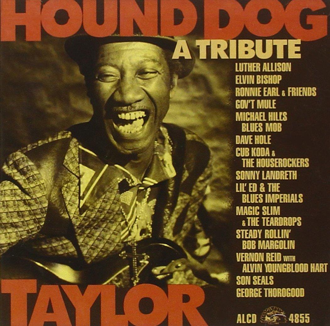Tributo a Hound Dog Taylor